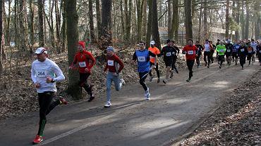 175 biegaczy wyruszyło na trasę