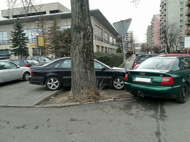 Zdjęcie numer 0 w galerii - Mistrzowie parkowania w Opolu. Bezczelność czy brak wyobraźni? [ZDJĘCIA]