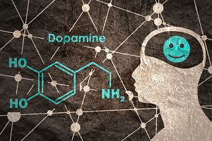 Dopamina: substancja o ogromnym wpływie na ośrodek przyjemności