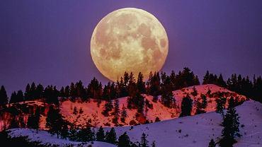 Horoskop na pełnię Kukurydzianego Księżyca - co cię czeka?