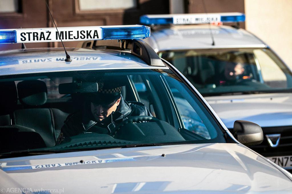 Radiowozy straży miejskiej [zdjęcie ilustracyjne]