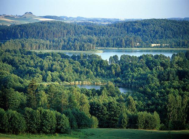 Polska to nie tylko góry i Bałtyk. Perły Polski północno-wschodniej, które warto zobaczyć choć raz w życiu