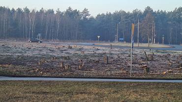 Krajobraz po wycince przy DK1 w Dąbrowie Górniczej