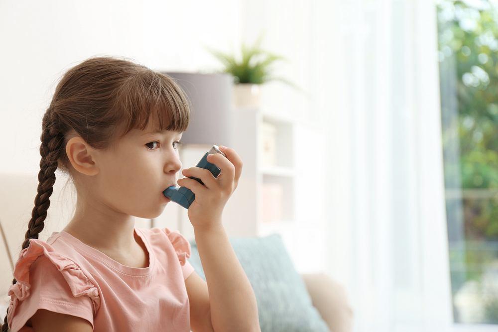 Za podwyższone stężenie przeciwciał IgE mogą odpowiadać różne choroby i stany zapalne. Są to m.in. choroby alergiczne, tak skórne, pokarmowe, jak i wziewne, włącznie z astmą oskrzelową oraz reakcjami anafilaktycznymi.