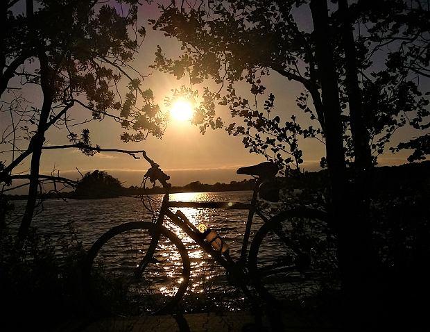Dziesiątki kilometrów tras rowerowych, lasy, łąki i stawy. W tym miejscu każdy będzie czuł się dobrze