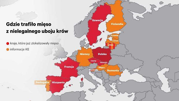 Gdzie mogło trafić mięso z nielegalnego uboju w Polsce