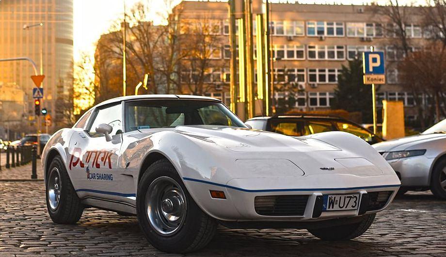 Chevrolet Corvette C3 Stingray, Panek CarSharing