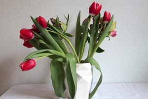 Sprytny sposób na: piękną aranżację kwiatów w wazonie