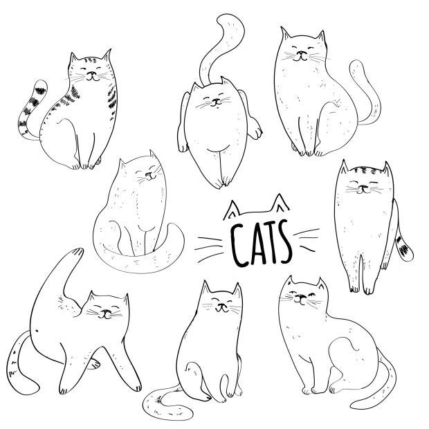 Rysując kota możesz wzorować się na innym obrazku.