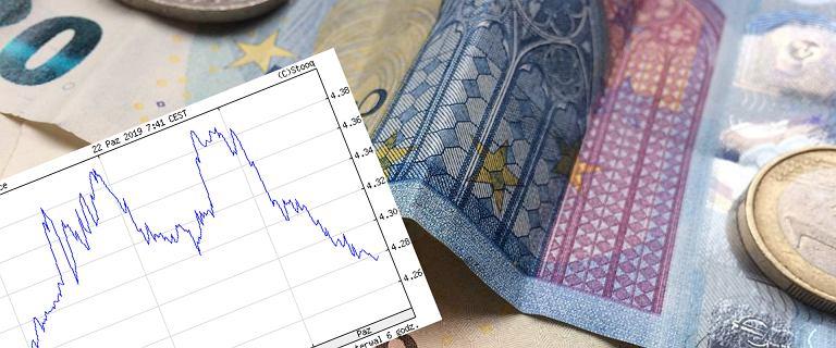 Kursy walut 22.10 o godz. 7. Dolar, euro i frank najtańsze od miesięcy