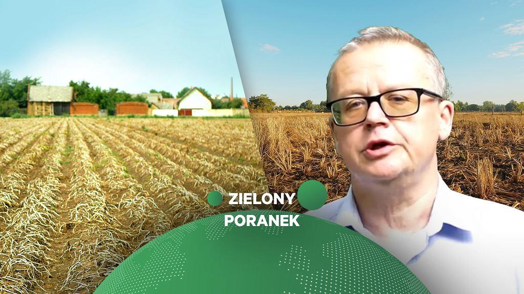 Prof. Zbigniew Karaczun w Zielonym Poranku Gazeta.pl