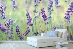 Tapety w kwiatowe wzory