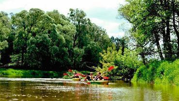 Lubelszczyzna, Bug - jedna z niewielu rzek nietkniętych przezcywilizację - idealny na spływy kajakowe