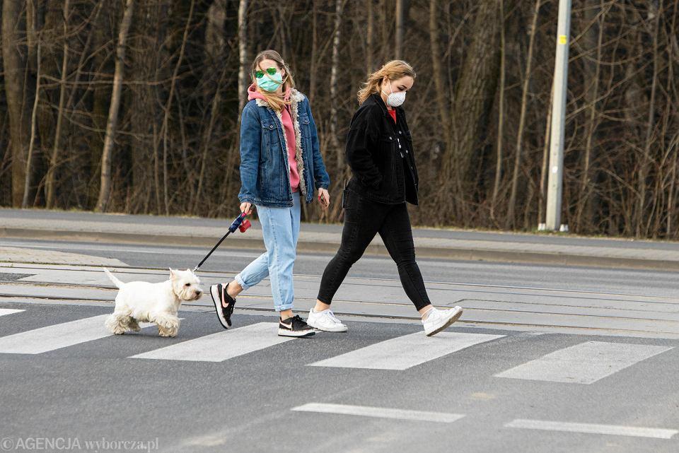 Spacer z psem w czasie epidemii koronawirusa