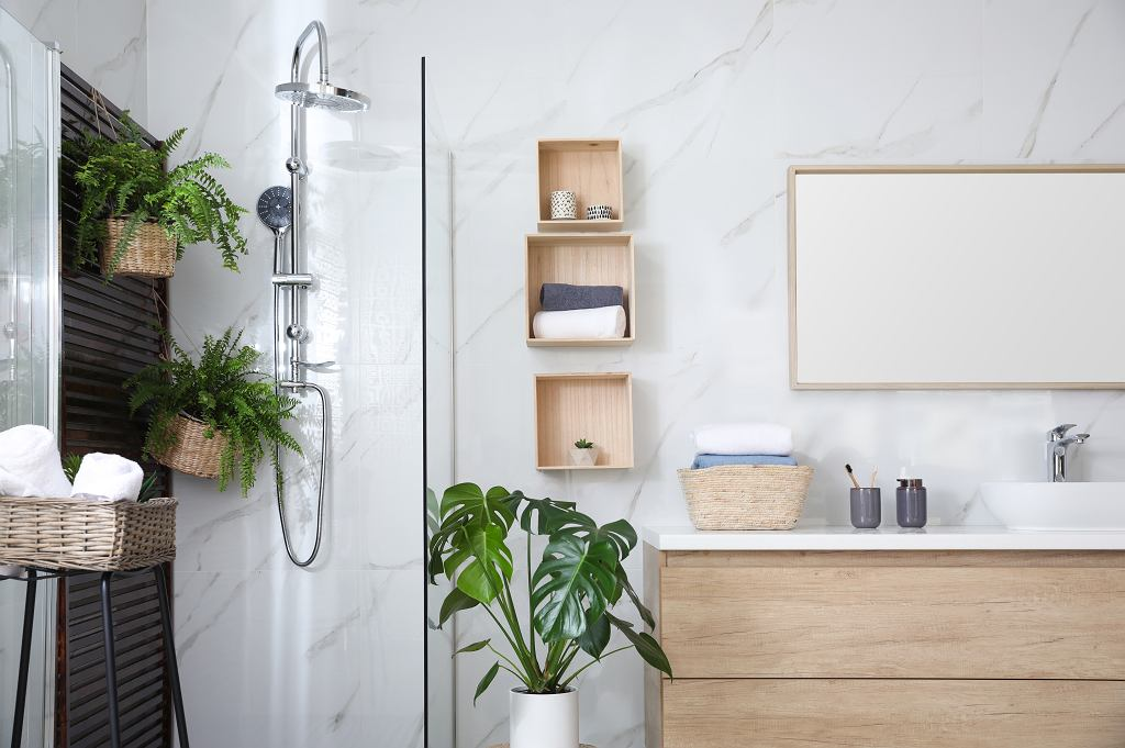 Bathroom interior with shower stall, counter and houseplants. Idea for design