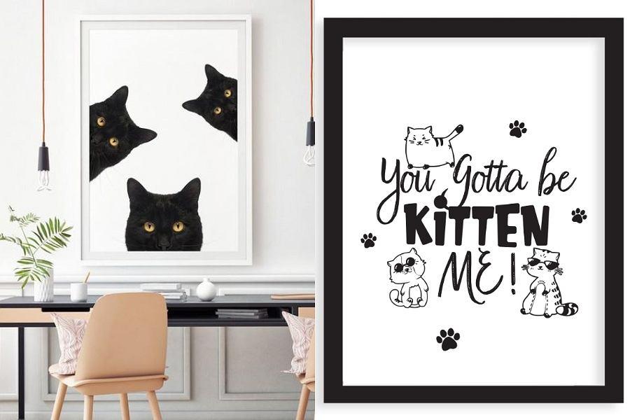 Plakaty ze zwierzakami