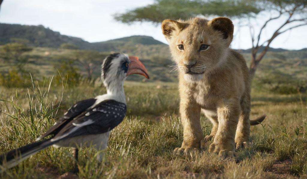 'Król Lew' powrócił na ekrany kin 19 lipca