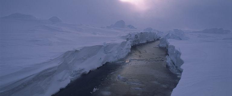 Luksusowy mikrohotel na biegunie północnym. O cenę lepiej nie pytajcie