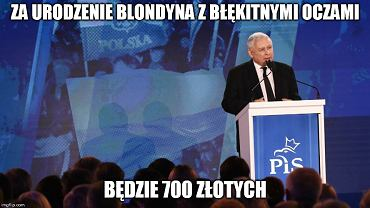 Konwencja PiS Memy