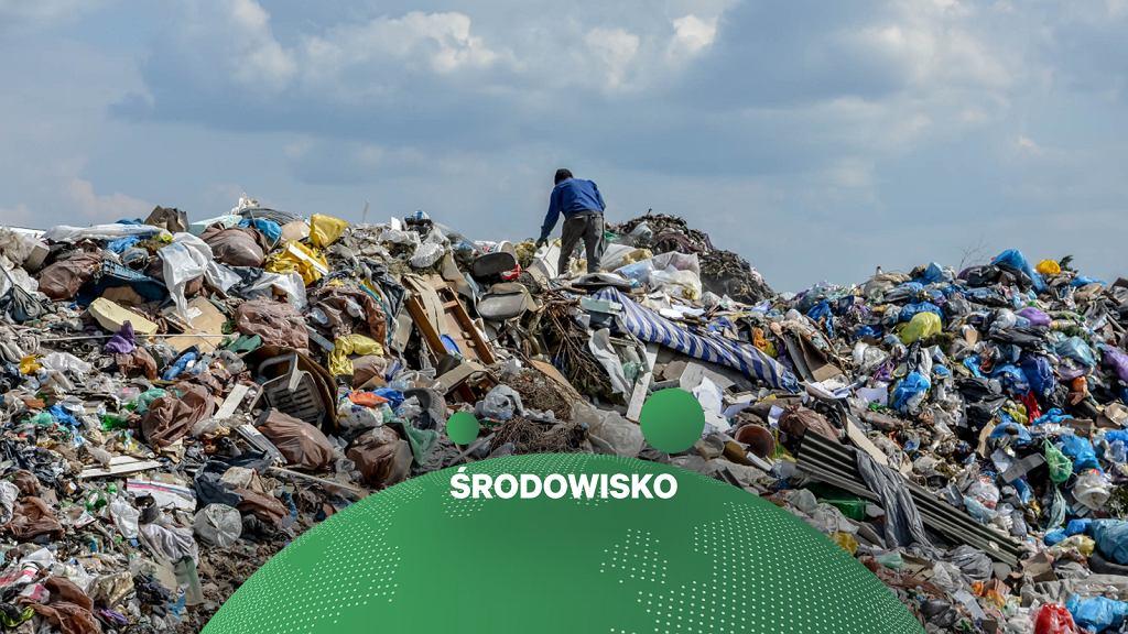 Wysypisko śmieci, zdjęcie ilustracyjne.