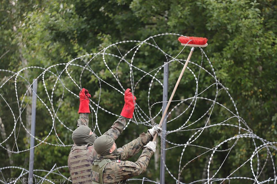 Płot z drutu kolczastego na granicy polsko-białoruskiej (zdjęcie ilustracyjne)