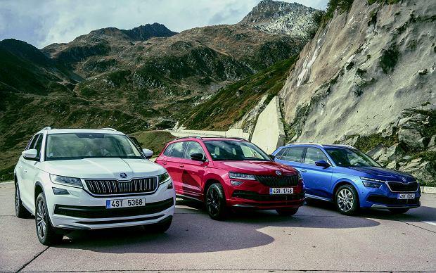 Kodiaq ma najwięcej do zaoferowania. Przestrzeni i wersji - Scout, Sportline, Laurin & Klement, a także RS.