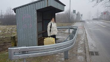 Kuriozalna wiata w Dąbrówkach Breńskich