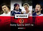 Ikona Sportu 2017 czytelników Sport.pl [KANDYDACI]