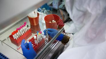 Praca służb medycznych w laboratorium badającym próbki na obecność koronawirusa