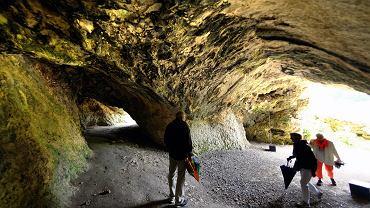 Jaskinia Vogelherd