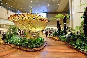 Pasażerowie wybrali najlepsze lotniska na świecie. Na zwycięskim basen i ogrody. Jest też jedno z Polski