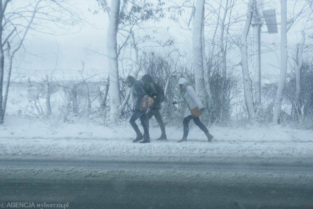 W czwartek możemy spodziewać się opadów śniegu i silnego wiatru powodującego zamiecie