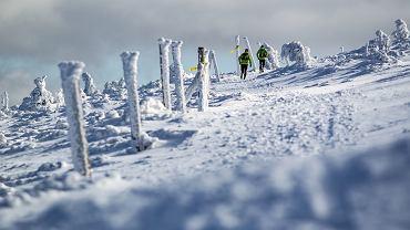 11 marca 2017 - zapamiętajcie dobrze tą datę. Tego dnia odbędzie się już czwarta edycja Zimowego Ultramaratonu Karkonoskiego im. Tomka Kowalskiego. W tegorocznej edycji na starcie pojawi się 350 śmiałków. Nie są to przypadkowe osoby.
