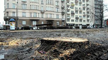 Wycinka przy Poznańskiej