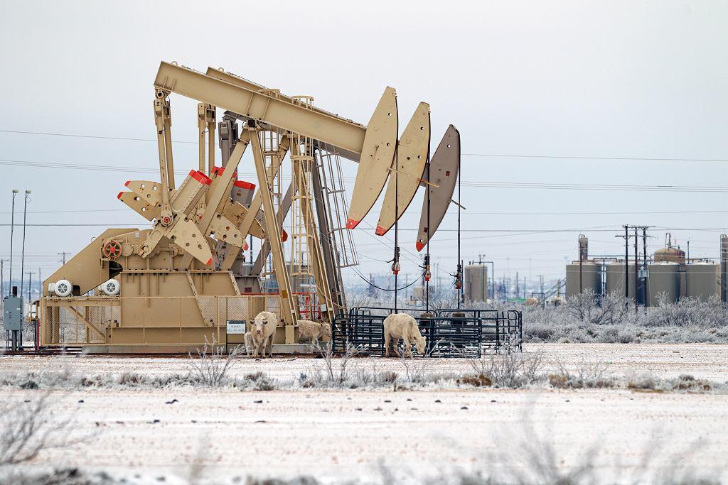 Ropa naftowa drożeje. Na zdjęciu pompy w Teksasie w USA.
