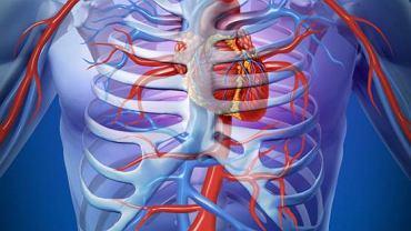 Łuk aorty to odcinek tętnicy, który łączy aortę wstępującą oraz zstępującą. Do rozwarstwienia naczynia w tym miejscu dochodzi bardzo rzadko