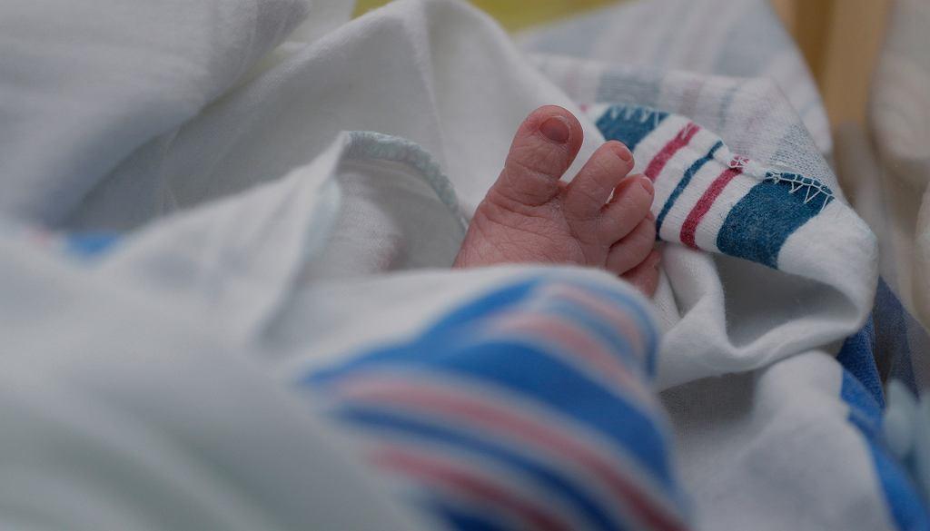 'Newsweek': Ukraińskie surogatki rodzą dzieci w szpitalu na Wilanowie i oddają je parom z Europy Zachodniej (zdjęcie ilustracyjne)