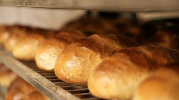 Chleb (zdjęcie ilustracyjne)