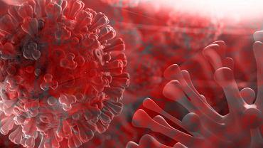 Nanotechnologia może pomóc w zwalczeniu śmiertelnej 'burzy cytokin', wywołanej przez COVID-19