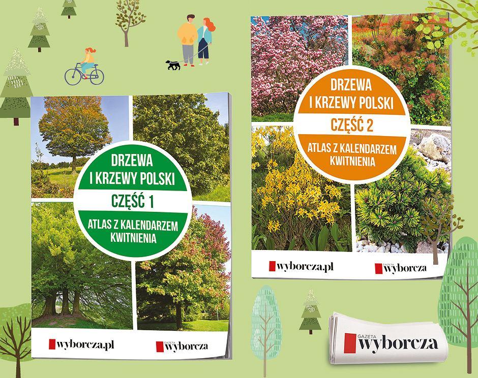 Drzewa i krzewy. Kalendarz kwitnienia
