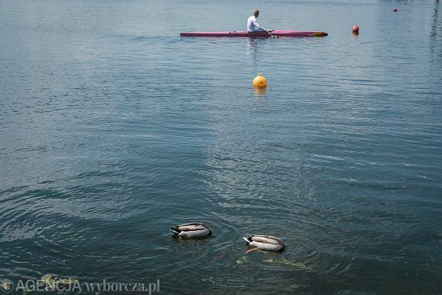 Zdjęcie numer 9 w galerii - Polki z medalami! Na Malcie trwają Mistrzostwa Europy w kajakarstwie i parakajakarstwie