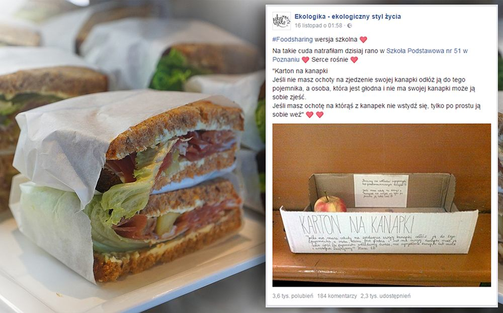 Foodsharing w poznańskiej Szkole Podstawowej nr 51. Czy trend się przyjmie w innych placówkach?