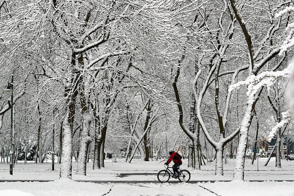 Prognoza pogody. Kiedy spadnie śnieg? (zdjęcie ilustracyjne)