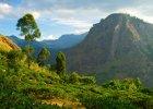 Sri Lanka: poznaj magiczną wyspę w południowej Azji