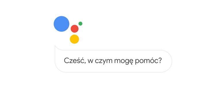 Asystent Google już po polsku. Sprawdzamy jak działa