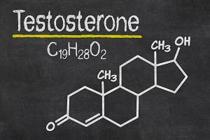 Nie tylko testosteron - poznaj hormony męskie