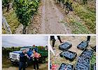 Mołdawia - jedźcie, zanim zjadą się tam inni. Jedna z ostatnich białych plam na turystycznej mapie Europy zaskakuje