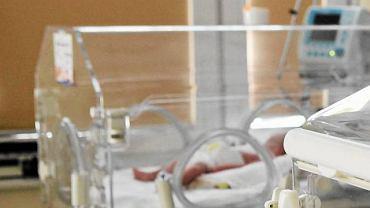 Niemowlę w inkubatorze [ zdjęcie ilustracyjne]