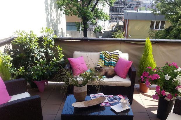 Balkon, jako mini salon - jak urządzić?