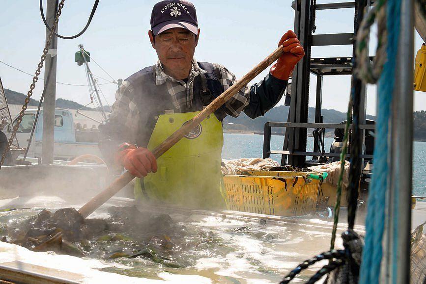 Masao obgotowuje wodorosty w temperaturze 95 stopni. Wtedy nabierają zielonej barwy